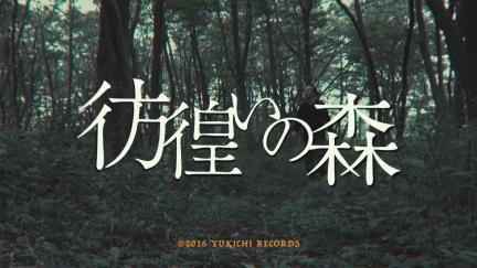 """NORIKIYO """"彷徨いの森"""""""